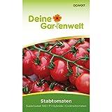 Stabtomaten Supersweet 100 F1 Samen - Solanum lycopersicum - Tomatensamen - Gemüsesamen - Saatgut