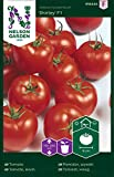 Tomatensamen Shirley F1 - Nelson Garden Samen für Gemüsegarten - Tomaten Saatgut (7 Stück) (Einzelpackung)