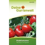 Stabtomaten Harzfeuer F1 Samen - Solanum lycopersicum - Tomatensamen - Gemüsesamen - Saatgut