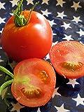 Rote robuste Freilandtomate 'Hellfrucht' (Solanum lycopersicum) 20 Samen
