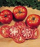 ABRC Tomate, Druzba