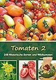 Tomaten 2: 248 Historische Sorten und Wildtomaten