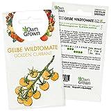 Tomaten Samen Golden Currant: Gelbe Wildtomaten Samen zum einfachen Anbau von Tomatenpflanzen für Balkon, Garten – 5 Golden Currant Tomatensamen für köstliche Kirschtomaten – Gemüse Samen von OwnGrown