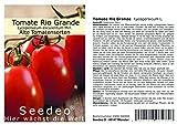 Seedeo® Tomate Rio Grande (Lycopersicum L.) 25 Samen BIO