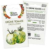 Tomaten Samen Green Zebra: Premium Saatgut Grüne Tomaten zum einfachen Anbau von Tomatenpflanzen für Balkon und Garten – 5 Grüne Tomatensamen alte Sorten – Köstliche Salattomate von OwnGrown
