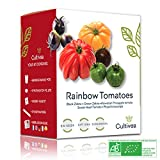 Cultivea Rainbow Tomatoes – Bio Tomaten Anzuchtset -100% Öko Samen – Indoor Garten – Das perfekte Geschenk – Gemüse Set (Green & Black Zebra, Sweet Heart, Haiwaiian Pineappel, Physalis) – DIY