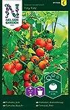 Tomatensamen Tiny Tim - Nelson Garden Samen für Gemüsegarten - Kirschtomaten Saatgut (60 Stück) (Einzelpackung)